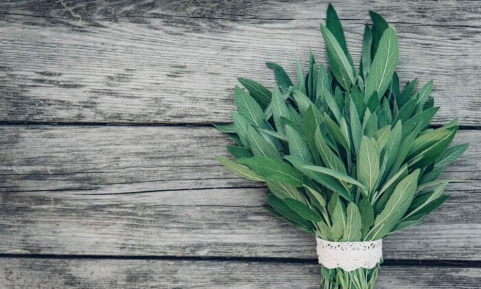 Sage has varied medicinal qualities and is packed with nutrients and antioxidants. (Irina Sokolovskaya/Shutterstock)