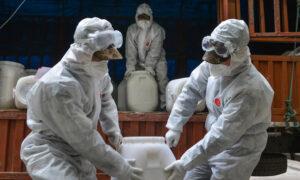 Experts Sound the Alarm Over North Korea Coronavirus Cases