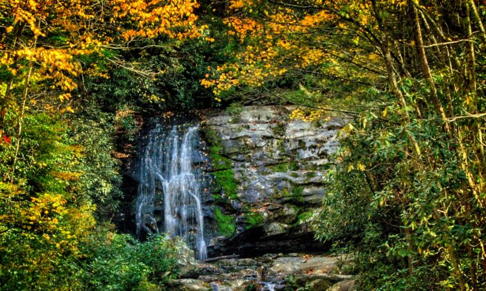 A waterfall sighting by the loop road through Cades Cove. (Fred J. Eckert)