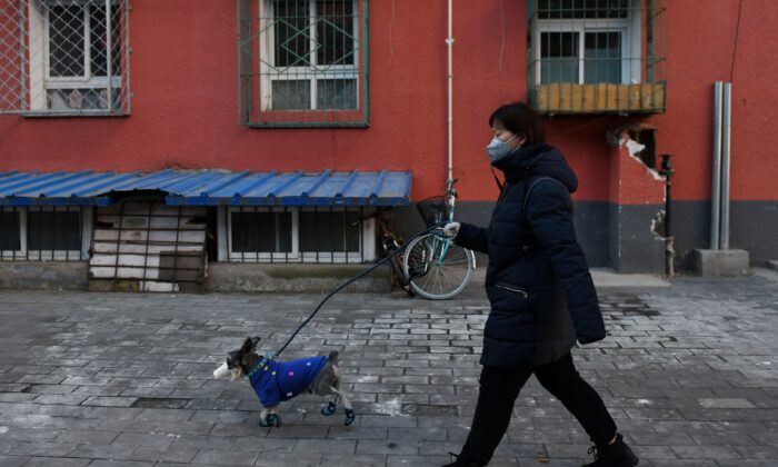 A woman wears a face mask as she walks her dog on a street in Beijing, China on Feb. 4, 2020. (Greg Baker/AFP via Getty Images)