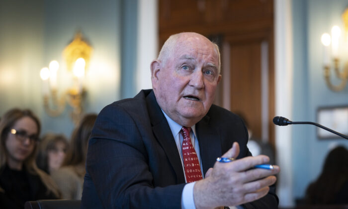 U.S. Secretary of Agriculture Sonny Perdue testifies during a House Agriculture Committee hearing in the Longworth House Office Building in Washington on March 4, 2020. (Drew Angerer/Getty Images)