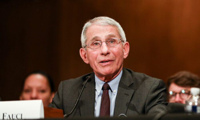 National Institute of Allergy and Infectious Diseases Director Anthony Fauci testifies at a Senate hearing regarding the coronavirus in Washington on March 3, 2020. (Charlotte Cuthbertson/The Epoch Times)
