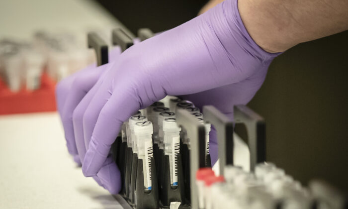 Samples are tested for respiratory viruses in a file photograph. (Danny Lawson/Pool/AFP via Getty Images)