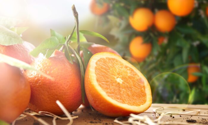 Every part of the orange, from its peel to its odor, has health benefits for human beings. (Davizro Photography/Shutterstock)