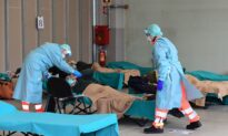 Anthony Fauci: Italy's High Virus Mortality Rate Due to Elderly Population