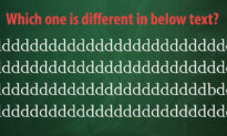 How Quickly Can You Find the 'Odd One Out' in This Mind-Boggling Picture Puzzle?