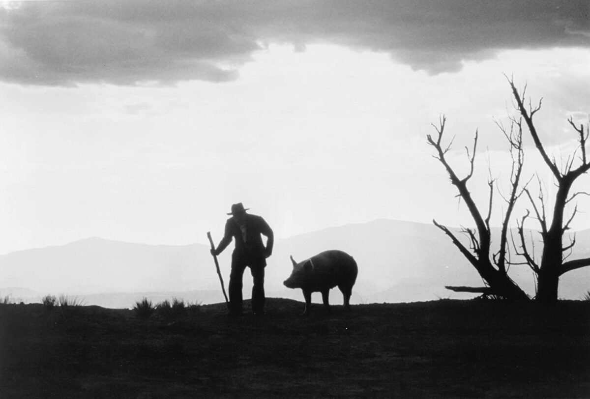 old man and pig in 'The Milagro Beanfield War'