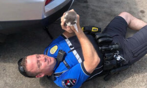 Police Officer Rescues 2 Tiny Kittens From TJ Maxx Store Parking Lot, Then Decides to Adopt Them