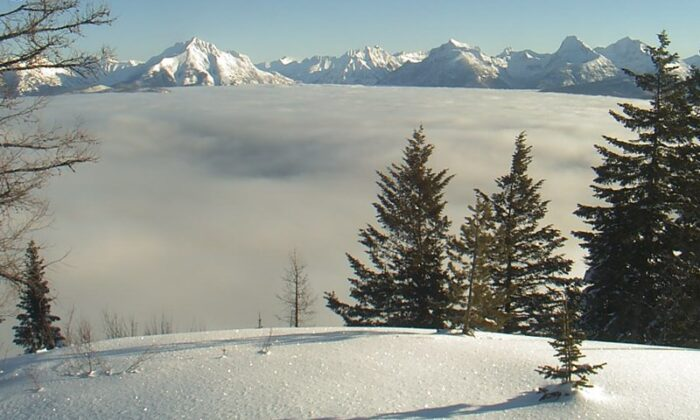 View of the Continental Divide from the Apgar Lookout Webcam in Glacier National Park. (NPS)