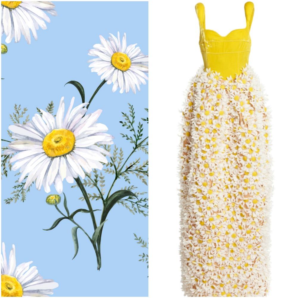 daisy assoulin
