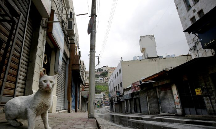 A lone cat walks along a market street in the center of the Jordanian capital Amman, during a nationwide curfew imposed by the authorities in order to control the spread of the CCP virus, on March 21, 2020. (Khalil MazraawiAFP via Getty Images)