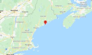 Armed Group Chops Down Tree in Maine, Blocks Driveway to Force Neighbor to Self-Quarantine