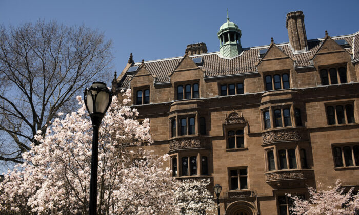 Trees bloom on the campus of Yale University in New Haven, Connecticut, on April 16, 2008. (Christopher Capozziello/Getty Images)