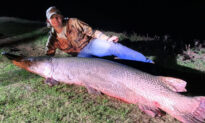 18-Year-Old Texas Fisherman Reels In Enormous Alligator Gar, Over 7 ft Long and 190 lbs