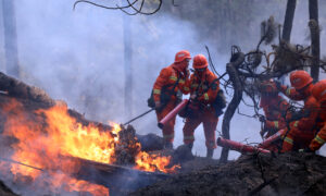 Forest Fire Kills 19 in China's Sichuan Province