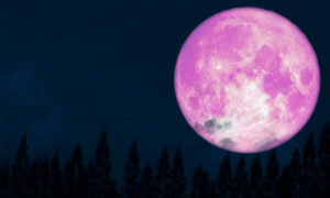April's 'Super Pink Moon' Marks the Arrival of Spring, May Be Brightest Lunar Event of 2020