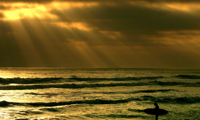A surfer enters the water at a beach in California in a file photograph. (Donald Miralle/Getty Images)