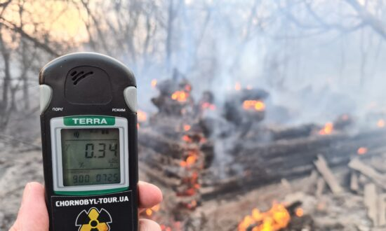 Chernobyl Radiation Back to Normal After Spike at Forest Fire Site