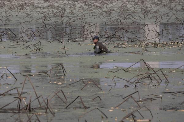 Virus-Outbreak-Wuhan-Struggling-Farmers