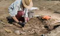 Scientists Discovered the Oldest Human Plague From 5,000-Year-Old Remains of a Woman