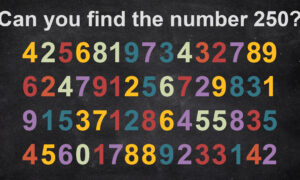 Can You Find the Hidden Number in This Brainteaser Quiz? Test Your Lateral Thinking Skills