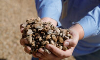 US Vulnerable to China Rare Earth Monopoly, Researchers Find