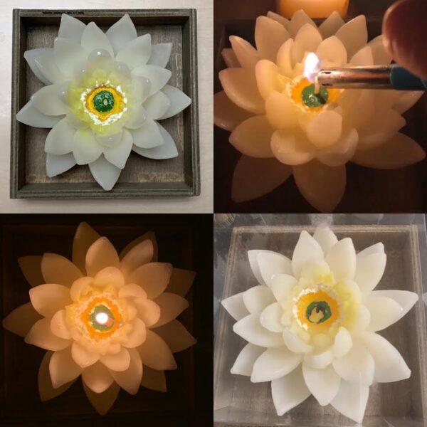 Falun gong april 25 2020