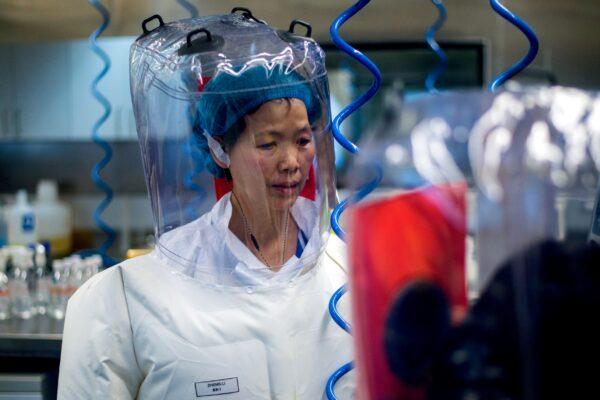 Chinese virologist Shi Zhengli