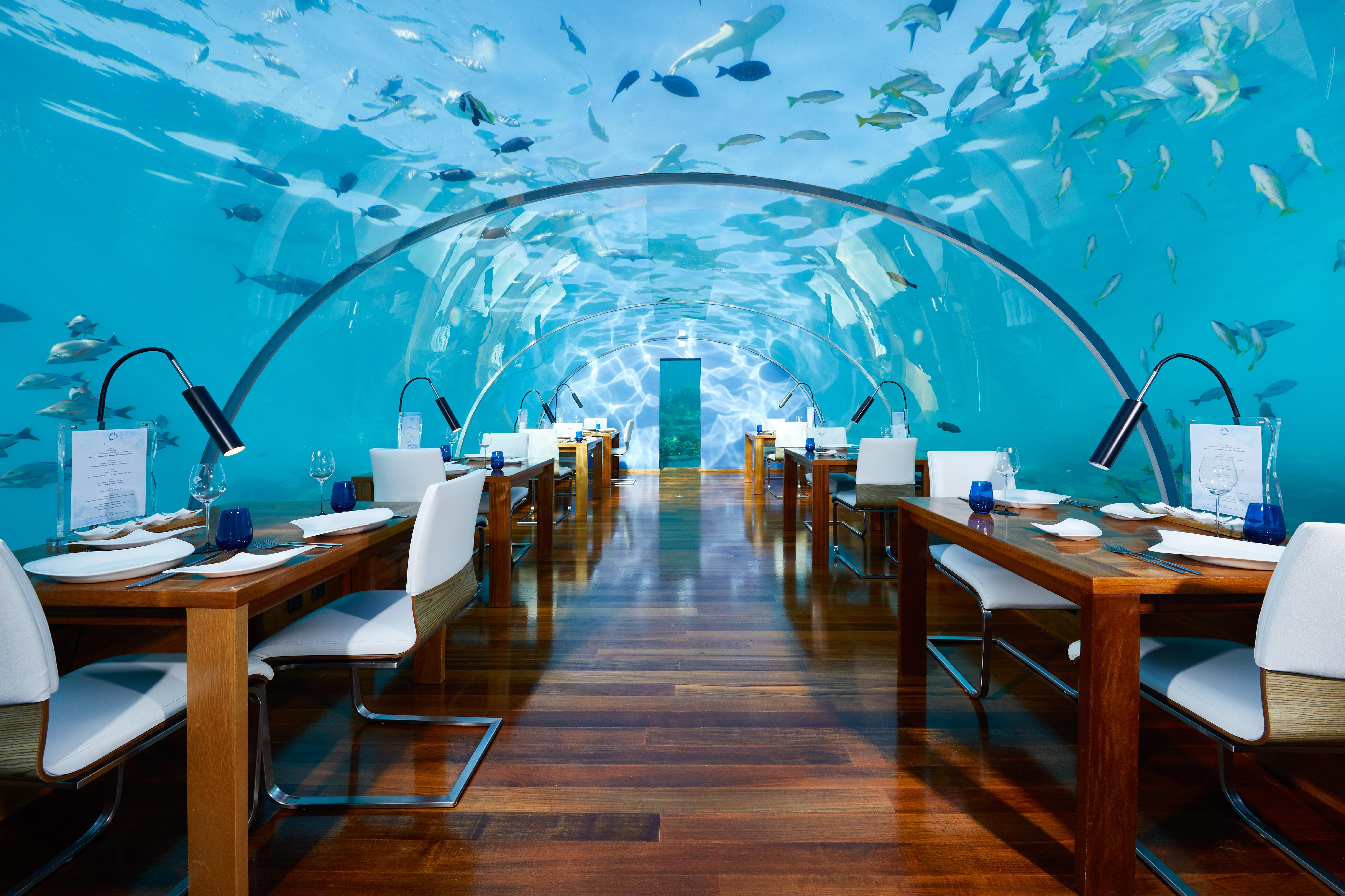 CONRAD MALDIVES RANGALI ISLAND_F_B_Ithaa Undersea Restaurant_Hero_credit Justin Nicholas