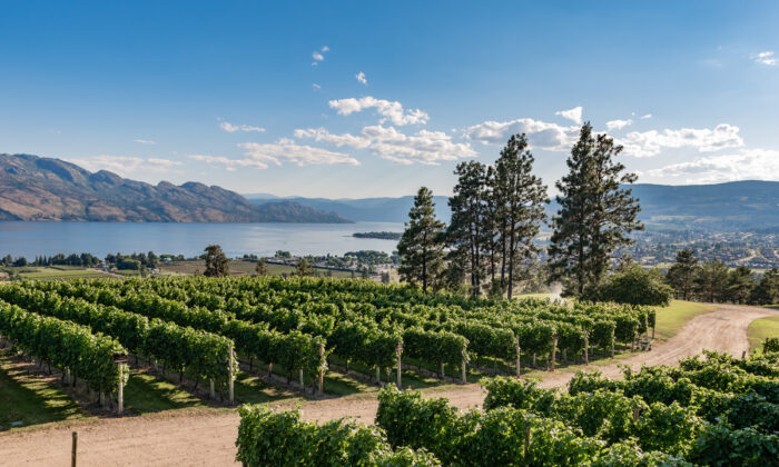 The Mission Hill Family Estate. (Courtesy of Von Mandl Family Estates)