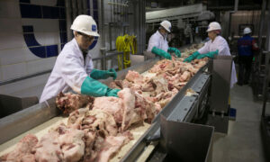 Meat Processors Adopt Robotics, Automation After CCP Virus Shutdowns