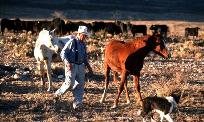 A rancher walks through his ranch near Carlsbad, N.M. on March 21, 2000. (Joe Raedle/Getty Images)