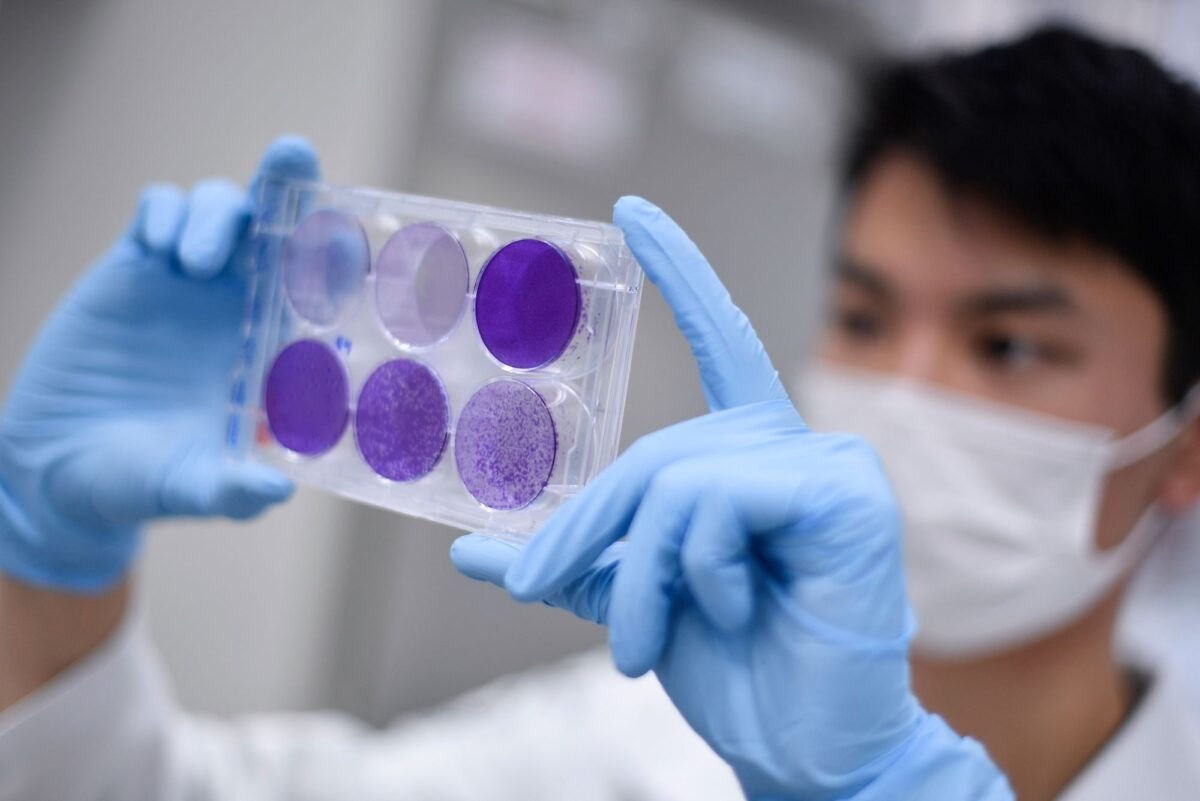 A researcher works on virus replication
