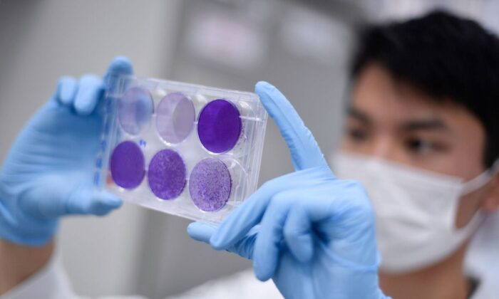 A researcher works on virus replication in order to develop a vaccine against COVID-19, in Belo Horizonte, Brazil, on March 26, 2020. (Douglas Magno/AFP/Getty Images)