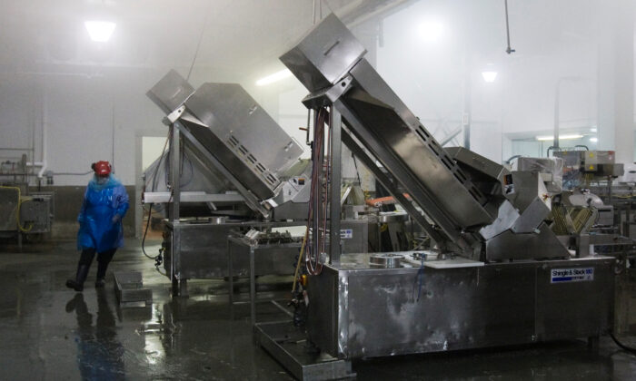 A man works to sterilize meat processing and packaging equipment at the Maple Leaf Foods plant in Toronto on August 21, 2008. (Mark Blinch/File Photo/Reuters)