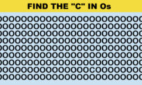Lockdown Challenge: How Quickly Can You Find the Odd One Out in This Puzzle?