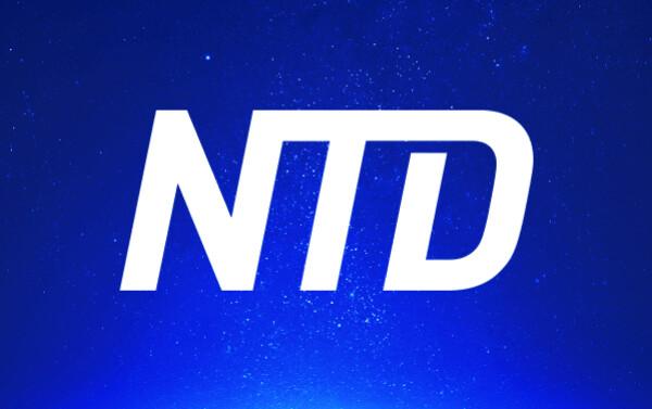 (NTD)