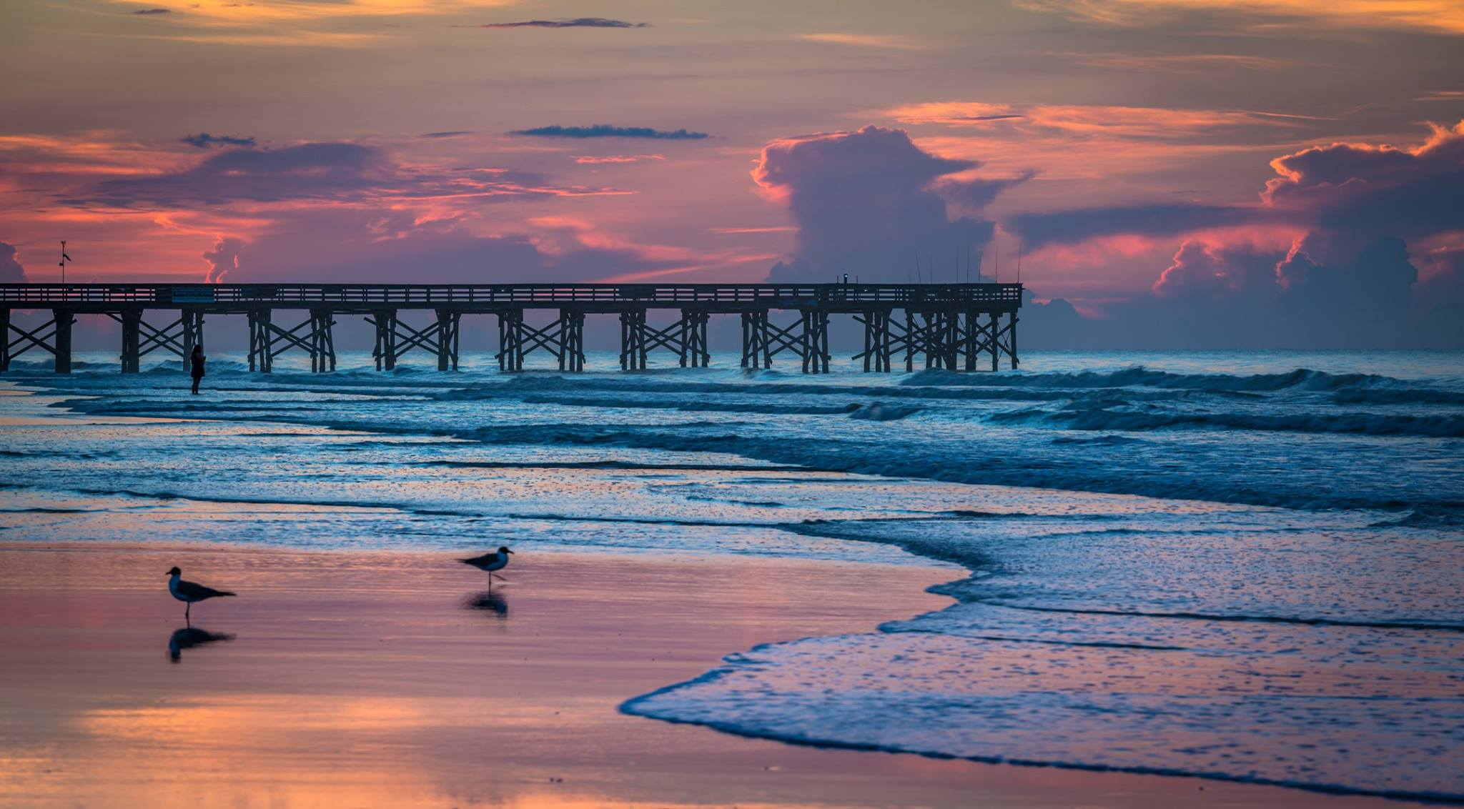 isle of palms charleston