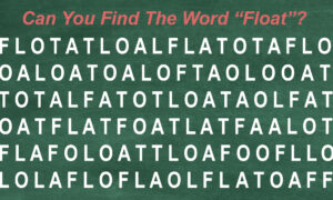 Can You Find the Hidden Word(s) in the Jumble of Letters? Test Your Word-Searching Skills!