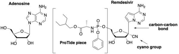 Remdesivir and RNA