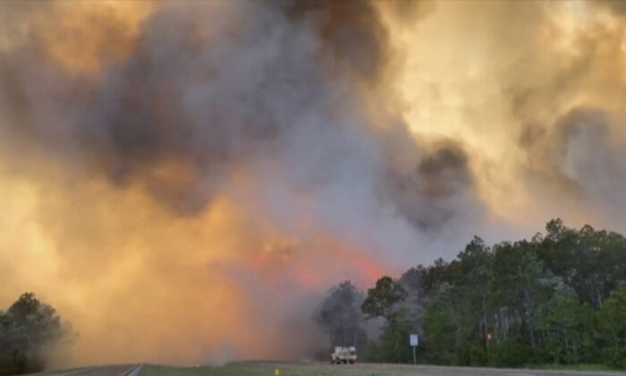 In this image made from video, fire and smoke rise from trees alongside a road in Santa Rosa County, Fla., on May 6 , 2020. (Florida Department of Agriculture and Consumer Services via AP)