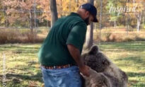 Heartwarming Moment Orphaned Bear Is Reunited With Human Friend