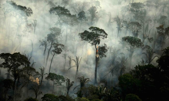 Smoke billows from a fire in an area of the Amazon rainforest near Porto Velho, Rondonia State, Brazil, on Sept. 10, 2019. (Bruno Kelly/Reuters)