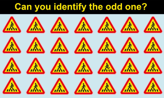 Picture Puzzles: How Fast Can You Spot the Odd Symbol Out From These Images?
