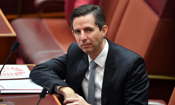 Senator Simon Birmingham, Canberra, Australia, May 14, 2020.  (Sam Mooy/Getty Images)