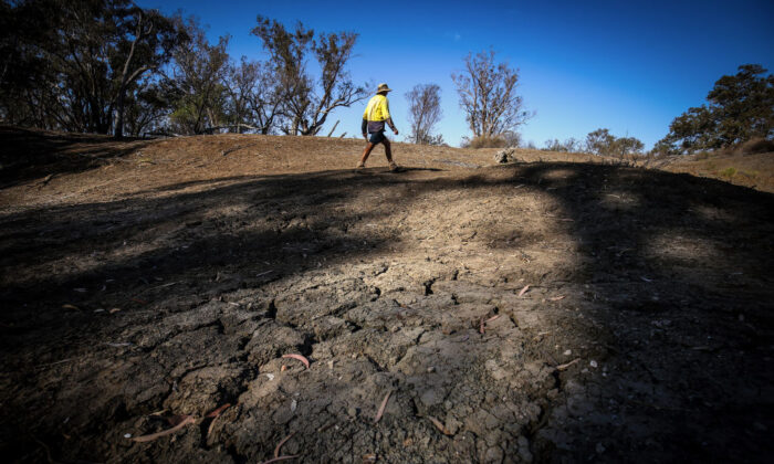 A farmer walks near the shells of dead mussels lying in the dried-up bed of the Namoi River near the north-western New South Wales town of Walgett on Oct. 6, 2019. (David Gray/Getty Images)