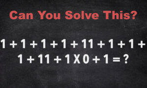 Show Off Your Genius by Solving This Tricky Math Question That Stumps Many a Netizen