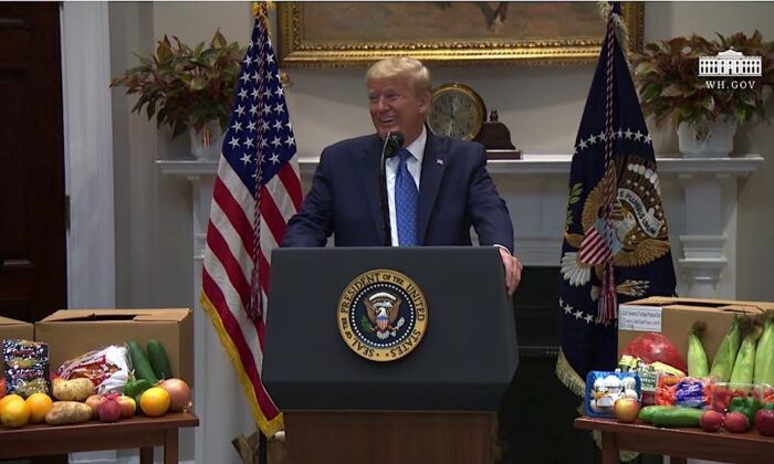 President Donald Trump delivers remarks on supporting farmers, ranchers, and the food supply chain, at the White House, in Washington, on May 19, 2020. (Screengrab via The White House/YouTube)