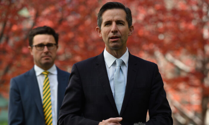 Agriculture Minister David Littleproud (L) and Senator Simon Birmingham during a press conference at Parliament House on May 12, 2020 in Canberra, Australia. (Sam Mooy/Getty Images)