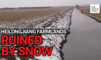 The 'Northern Grain Base' of China Suffers From Heavy Snow
